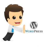 Guy-pushing-wordpress